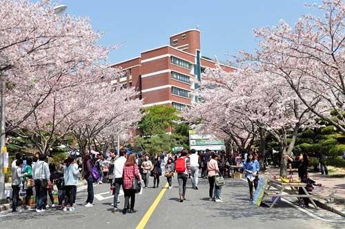 Hàn Quốc là lựa chọn du học của nhiều bạn hiện nay