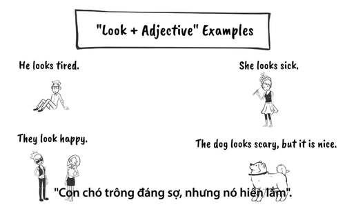 Phân biệt cách dùng 'look' và 'look like'